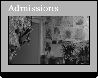 View our Admissions Requirements